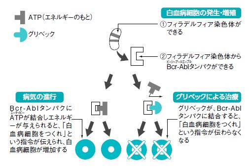 イマチニブ 作用機序 electronicdissertation.web.fc2.com